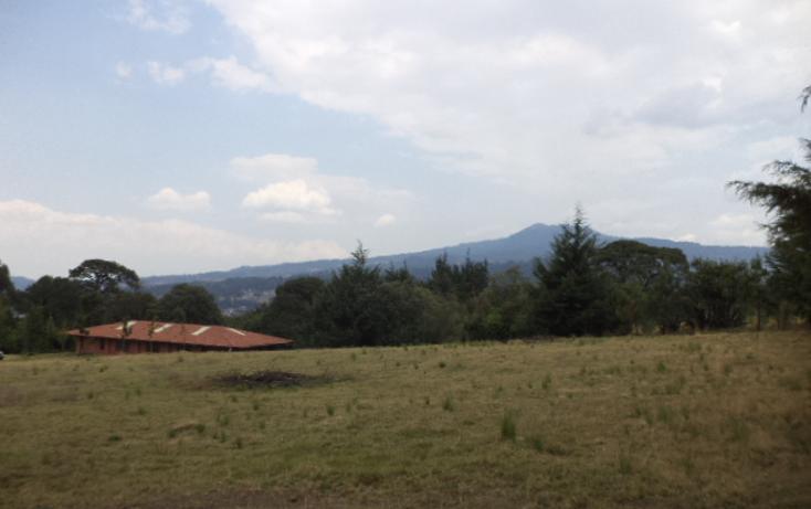Foto de casa en venta en  , san miguel topilejo, tlalpan, distrito federal, 1292587 No. 09