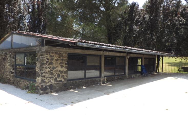 Foto de terreno comercial en renta en  , san miguel topilejo, tlalpan, distrito federal, 1292593 No. 08