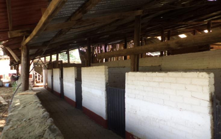 Foto de terreno comercial en renta en  , san miguel topilejo, tlalpan, distrito federal, 1292593 No. 32