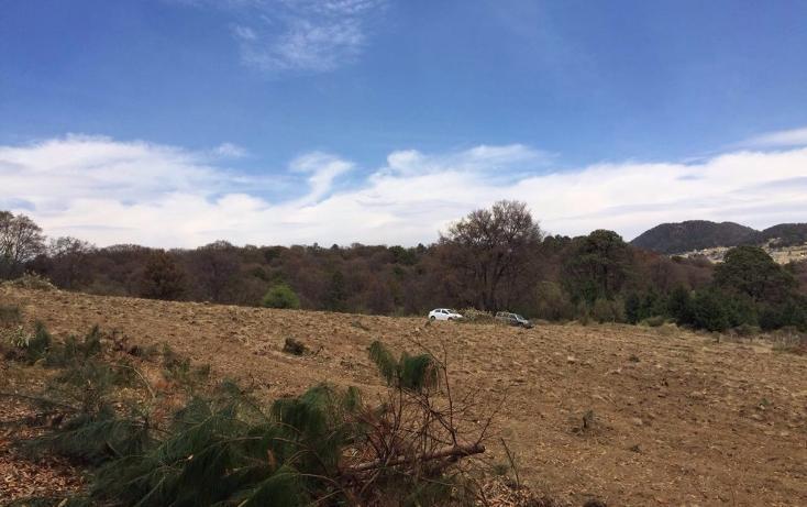Foto de terreno habitacional en venta en  , san miguel topilejo, tlalpan, distrito federal, 1799340 No. 09