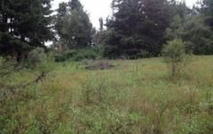 Foto de terreno habitacional en venta en  , san miguel topilejo, tlalpan, distrito federal, 2016072 No. 01