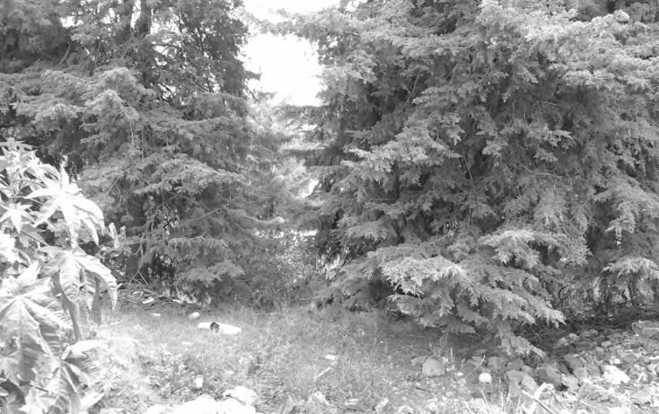 Foto de terreno habitacional en venta en  , san miguel xicalco, tlalpan, distrito federal, 1265833 No. 03