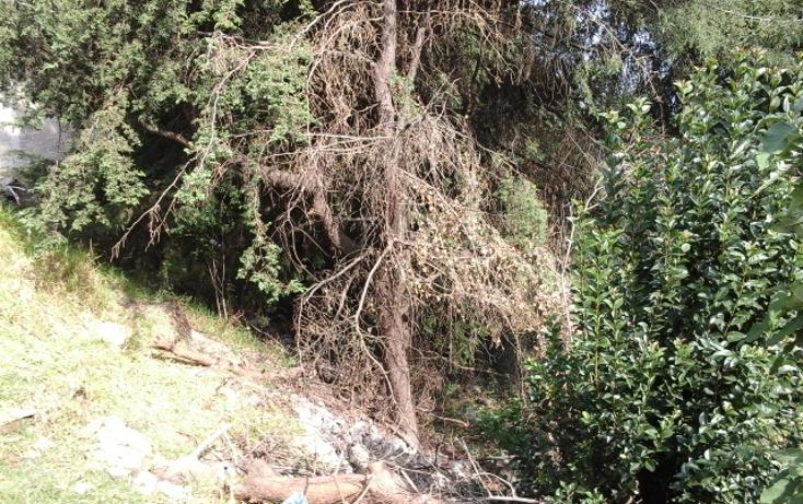 Foto de terreno habitacional en venta en  , san miguel xicalco, tlalpan, distrito federal, 1265833 No. 08