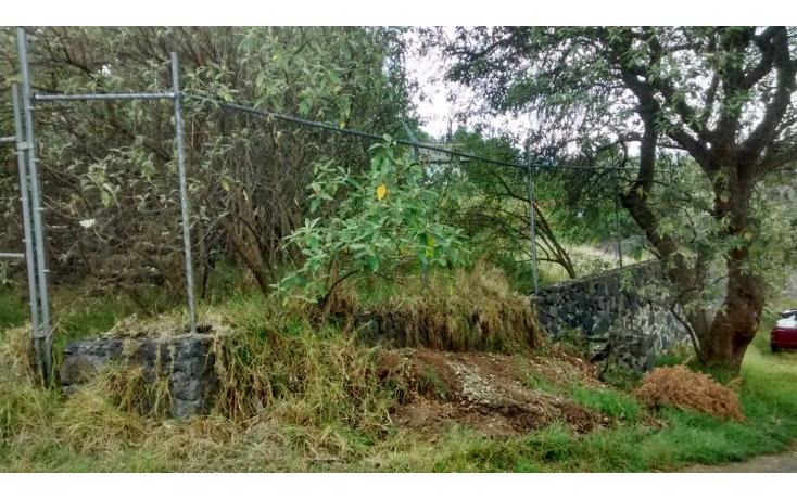 Foto de casa en venta en  , san miguel xicalco, tlalpan, distrito federal, 1911121 No. 04