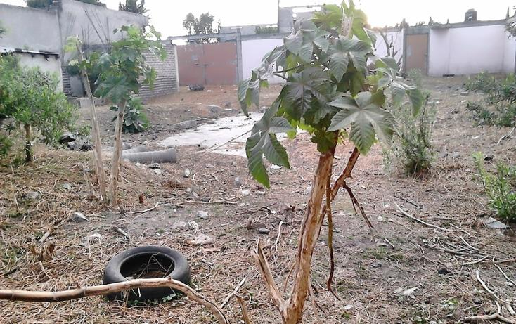 Foto de terreno habitacional en venta en  , san miguel xico ii sección, valle de chalco solidaridad, méxico, 1588714 No. 09