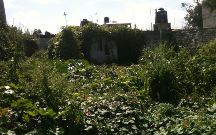 Foto de terreno habitacional en venta en  , san miguel xico iii sección, valle de chalco solidaridad, méxico, 1208253 No. 08