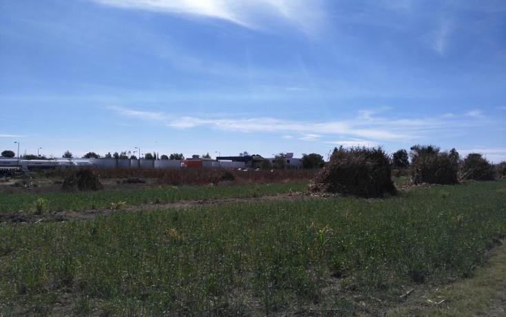 Foto de terreno industrial en venta en  , san miguel xoxtla, san miguel xoxtla, puebla, 1566200 No. 04