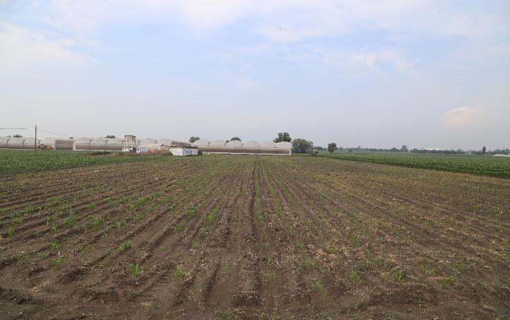 Foto de terreno comercial en venta en  , san miguel xoxtla, san miguel xoxtla, puebla, 1999536 No. 04