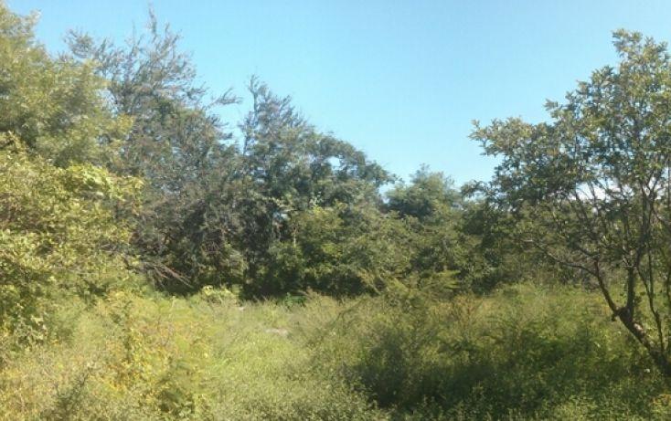 Foto de terreno comercial en venta en, san nicolás de ibarra, chapala, jalisco, 1654073 no 01