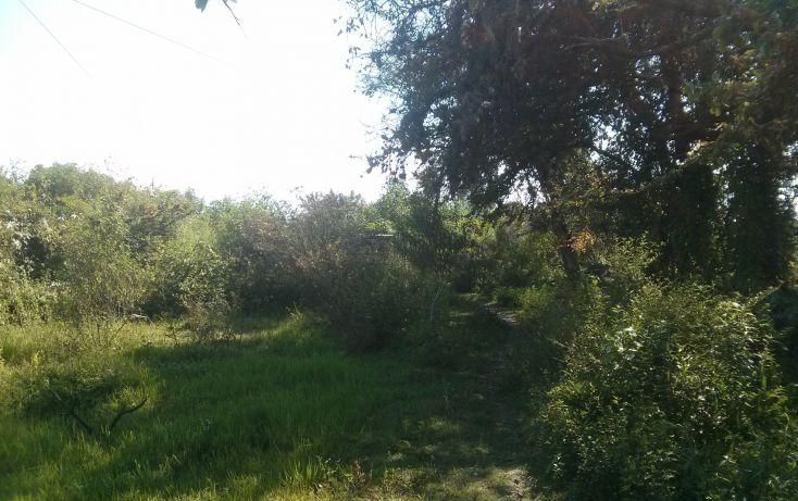Foto de terreno comercial en venta en, san nicolás de ibarra, chapala, jalisco, 1654073 no 07
