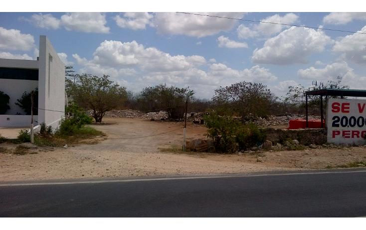 Foto de terreno comercial en venta en  , san nicolás del norte, mérida, yucatán, 1269381 No. 01