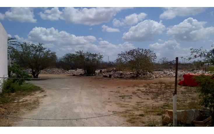 Foto de terreno comercial en venta en  , san nicolás del norte, mérida, yucatán, 1269381 No. 02