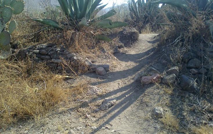 Foto de terreno habitacional en venta en  , san nicolás tecomatlan, ajacuba, hidalgo, 1712750 No. 09