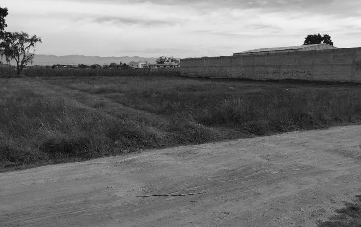 Foto de terreno comercial en venta en  , san nicolás tolentino, toluca, méxico, 1503617 No. 04