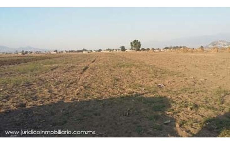 Foto de terreno habitacional en venta en  , san pablo atlazalpan, chalco, m?xico, 1626529 No. 02