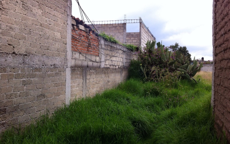 Foto de terreno habitacional en venta en  , san pablo autopan, toluca, m?xico, 1389113 No. 08
