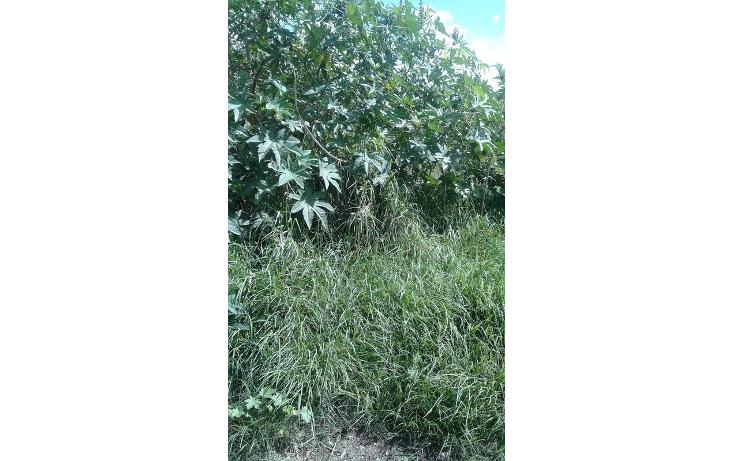 Foto de terreno habitacional en venta en  , san pablo tecamac, san pedro cholula, puebla, 1452327 No. 04