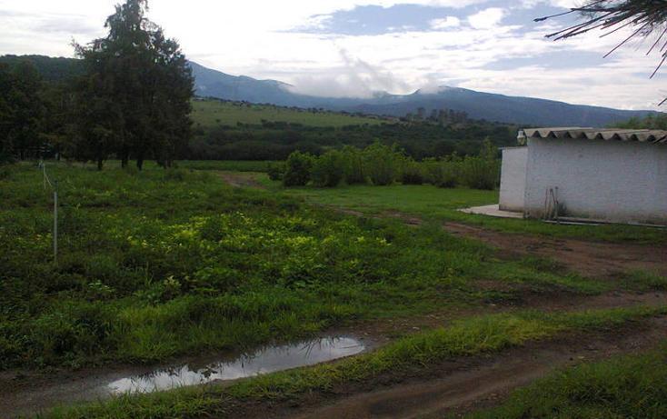 Foto de rancho en venta en  , san pedro ahuacatlan, san juan del río, querétaro, 1015461 No. 12