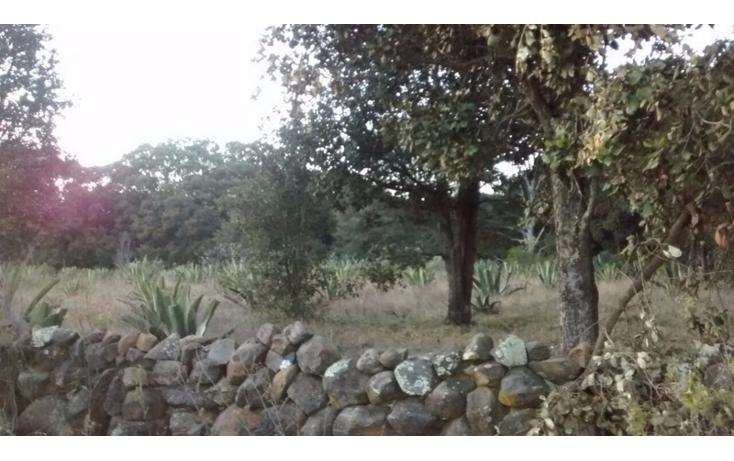 Foto de terreno habitacional en venta en  , san pedro ahuacatlan, san juan del r?o, quer?taro, 1858530 No. 15
