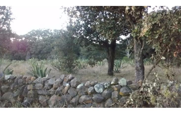 Foto de terreno habitacional en venta en  , san pedro ahuacatlan, san juan del r?o, quer?taro, 1858530 No. 17