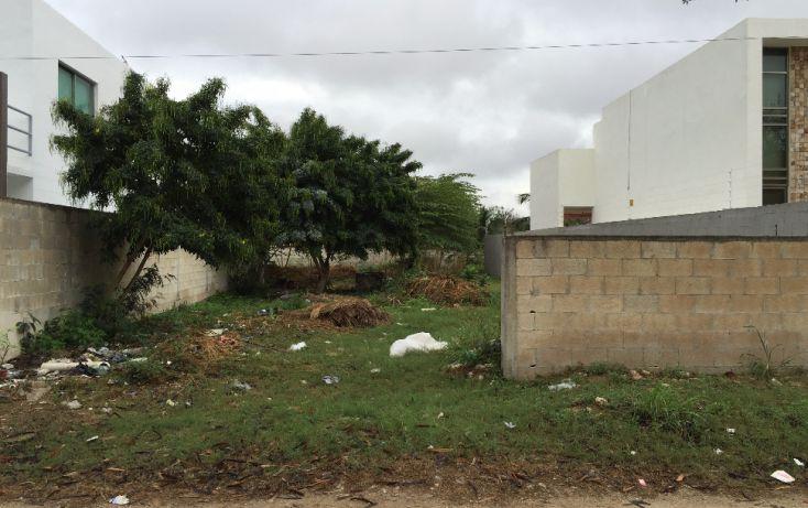 Foto de terreno habitacional en venta en, san pedro cholul, mérida, yucatán, 1830110 no 01