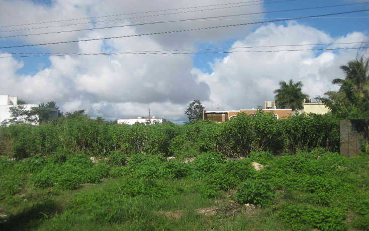 Foto de terreno habitacional en venta en  , san pedro cholul, mérida, yucatán, 941555 No. 02