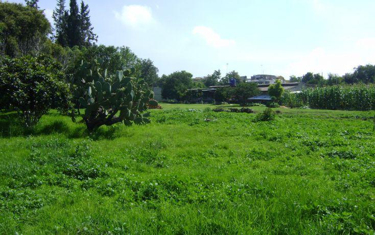 Foto de terreno habitacional en venta en san pedro de los pinos sn, san luis huexotla, texcoco, estado de méxico, 1961692 no 04
