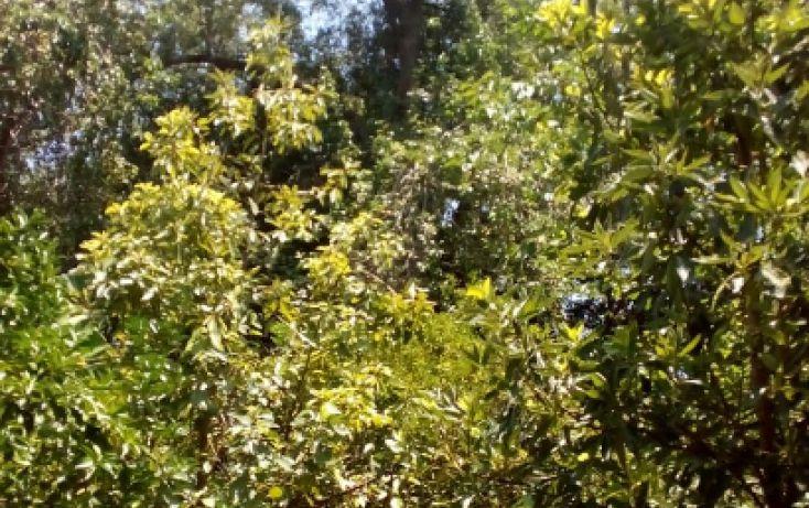 Foto de terreno comercial en venta en, san pedro el álamo, santiago, nuevo león, 1981678 no 04