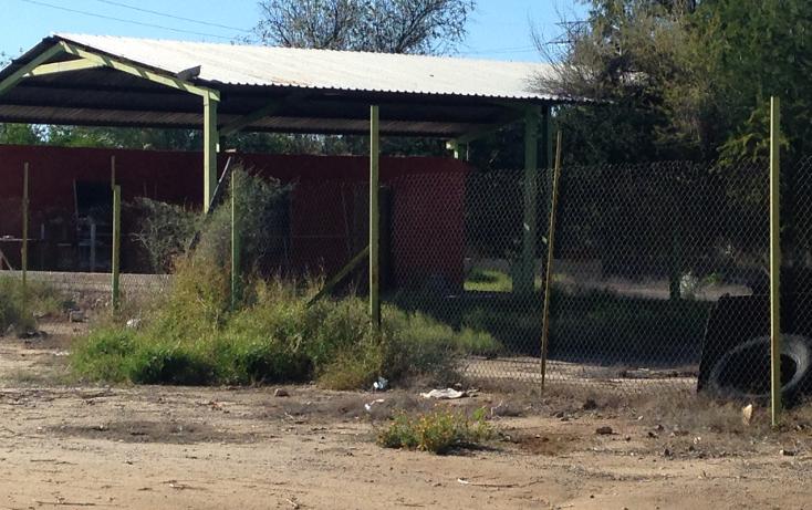 Foto de terreno habitacional en venta en  , san pedro el saucito, hermosillo, sonora, 1126501 No. 04