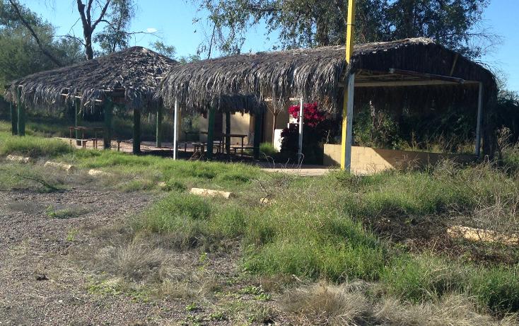 Foto de terreno habitacional en venta en  , san pedro el saucito, hermosillo, sonora, 1126501 No. 06