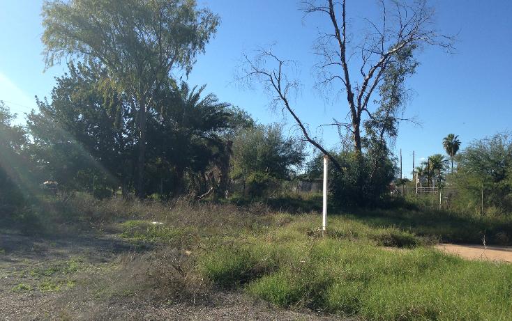 Foto de terreno habitacional en venta en  , san pedro el saucito, hermosillo, sonora, 1126501 No. 08
