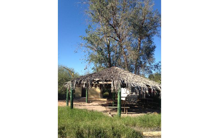 Foto de terreno habitacional en venta en  , san pedro el saucito, hermosillo, sonora, 1126501 No. 11