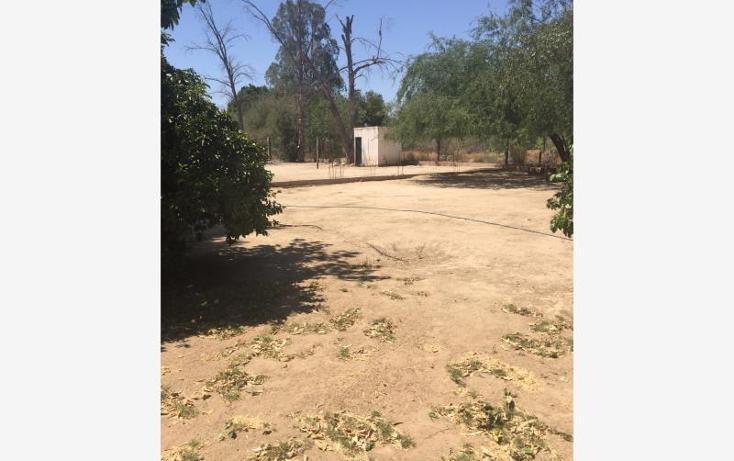 Foto de rancho en venta en  , san pedro el saucito, hermosillo, sonora, 1984760 No. 03