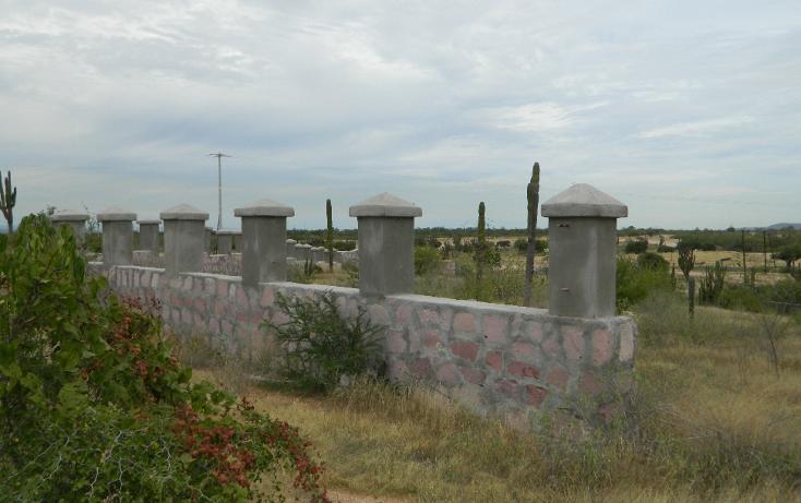Foto de terreno habitacional en venta en  , san pedro, la paz, baja california sur, 1052557 No. 01
