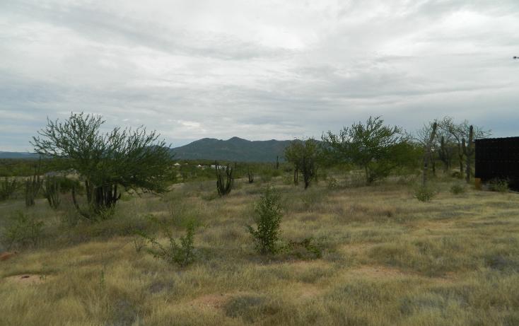 Foto de terreno habitacional en venta en  , san pedro, la paz, baja california sur, 1052557 No. 04