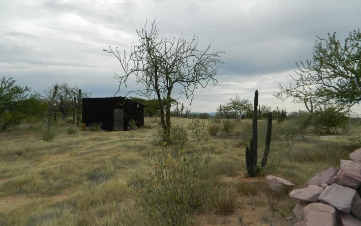 Foto de terreno habitacional en venta en  , san pedro, la paz, baja california sur, 1052557 No. 05