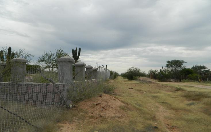 Foto de terreno habitacional en venta en  , san pedro, la paz, baja california sur, 1052557 No. 07
