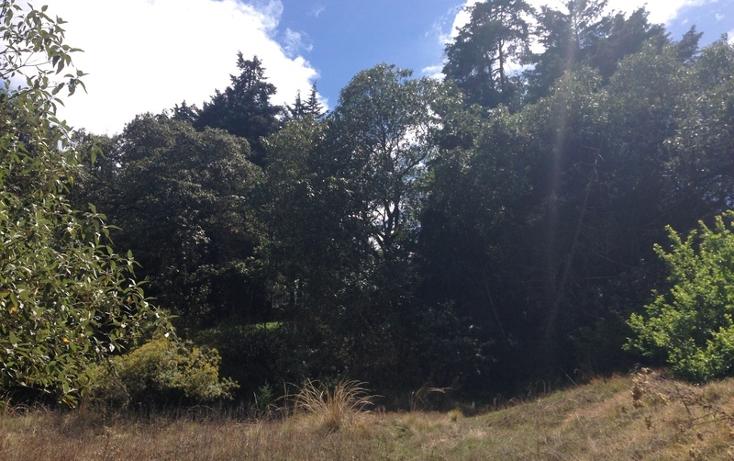Foto de terreno habitacional en venta en  , san pedro m?rtir fovissste, tlalpan, distrito federal, 1876420 No. 04