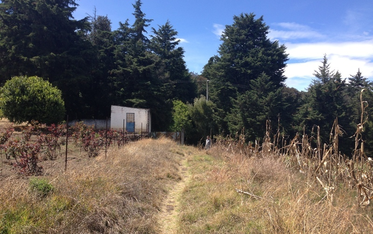 Foto de terreno habitacional en venta en  , san pedro m?rtir fovissste, tlalpan, distrito federal, 1876420 No. 06