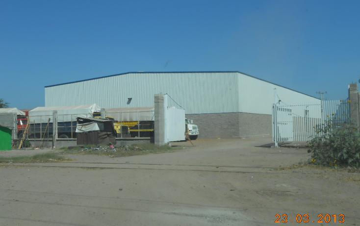 Foto de nave industrial en venta en  , san pedro, navolato, sinaloa, 1301901 No. 01