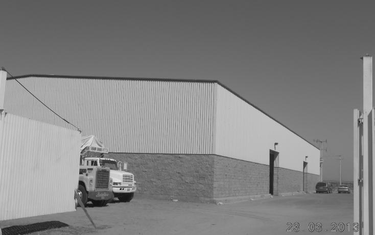 Foto de nave industrial en venta en  , san pedro, navolato, sinaloa, 1301901 No. 02