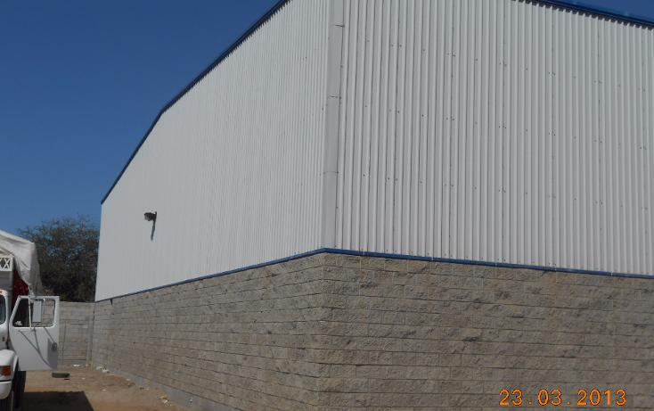 Foto de nave industrial en venta en  , san pedro, navolato, sinaloa, 1301901 No. 03
