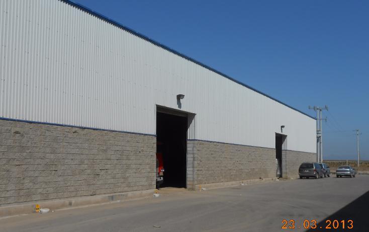 Foto de nave industrial en venta en  , san pedro, navolato, sinaloa, 1301901 No. 04