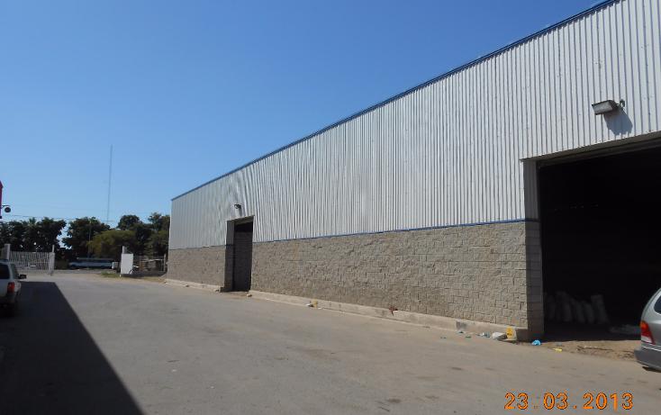 Foto de nave industrial en venta en  , san pedro, navolato, sinaloa, 1301901 No. 06