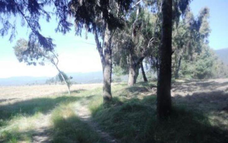 Foto de terreno habitacional en venta en, san pedro nexapa, amecameca, estado de méxico, 1209237 no 03