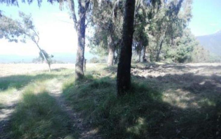 Foto de terreno habitacional en venta en, san pedro nexapa, amecameca, estado de méxico, 1209237 no 07