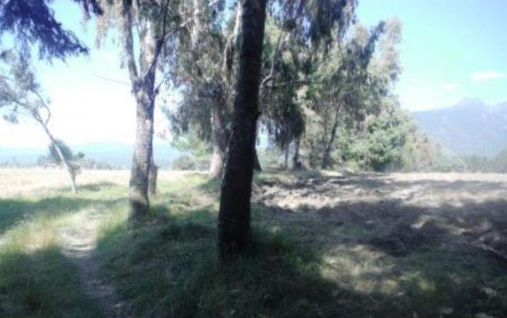 Foto de terreno habitacional en venta en, san pedro nexapa, amecameca, estado de méxico, 1209237 no 09
