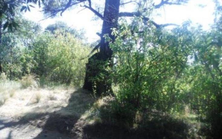 Foto de terreno habitacional en venta en, san pedro nexapa, amecameca, estado de méxico, 1209237 no 12