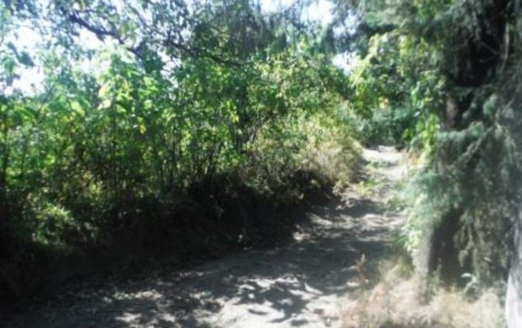 Foto de terreno habitacional en venta en, san pedro nexapa, amecameca, estado de méxico, 1209237 no 14