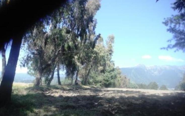 Foto de terreno habitacional en venta en  , san pedro nexapa, amecameca, m?xico, 1209237 No. 02